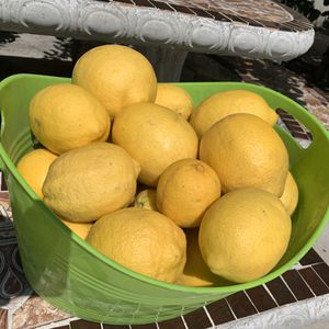 Limones for Sale in Ontario, CA