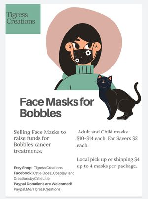 Face coverings - adult and child sizes for Sale in Monroe City, MO