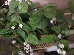 Fake plant with wicker for Sale in Phoenix, AZ