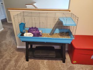 Guinea pig cage for Sale in Colorado Springs, CO