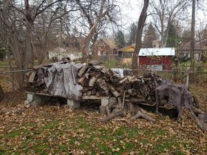 FREE FIREWOOD in Old Redford, Detroit for Sale in Farmington Hills, MI