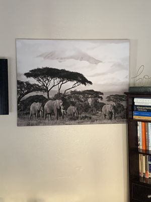 Elephant Canvas for Sale in Las Vegas, NV