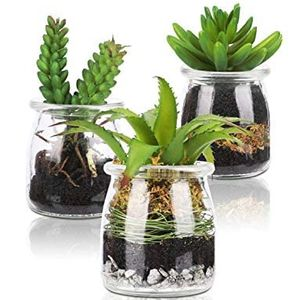 HaNaHaNa Artificial Succulent Plant Mini Potted Fake Plant Bathroom Kitchen Home Office Decoration 3 Piece Set New Elegant Glass Bottle for Sale in Beaumont, TX