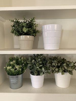 4 fake plants & 5 pots for Sale in Phoenix, AZ