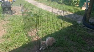 Pet Exercise Pen for Sale in Lynchburg, VA