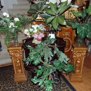 All Five Artificial Silk Plants for Sale in Las Vegas, NV