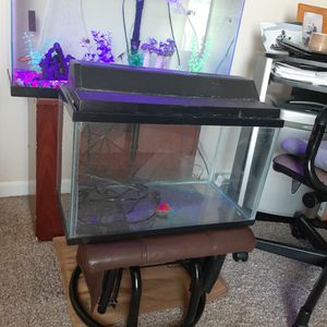 10 gallon aquarium with filter and lid and Light for Sale in Aurora, IL