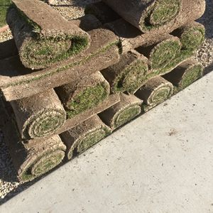 Grass Fresh for Sale in Buckeye, AZ