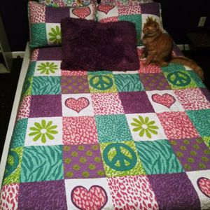 Girls Full Bed-Mattress, Bedding Included & Toy Box for Sale in Deltona, FL