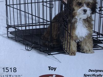 Dog Crate (folding) for Toy Breeds for Sale in Chino Hills,  CA