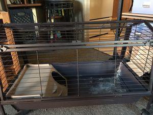 Guinea Pig Cage for Sale in Denver, CO