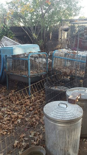 Metal roll around rabbit cages for Sale in Acampo, CA
