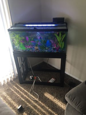 40 gallon fish tank with stand for Sale in Lanham, MD