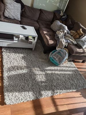 Shag rug for Sale in Redmond, WA
