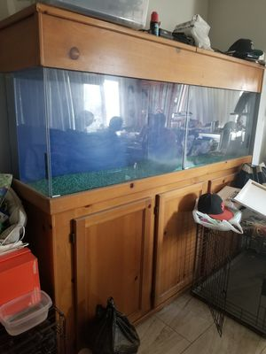 Fish tanks for Sale in Sylmar, CA