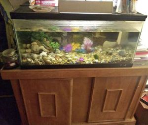40 gallon aquarium and accessories for Sale in Battle Creek, MI