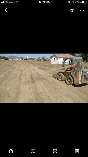 Bobcat for Sale in Littlerock, CA