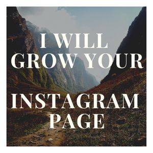 I will help grow your Instagram page organically! for Sale in Aurora, CO