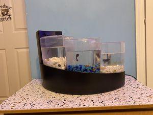 Betta falls fish tank for Sale in Riverside, NJ