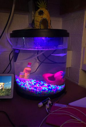 LED Light Fish Tank W/ Supplies And Decoration for Sale in Flagstaff, AZ