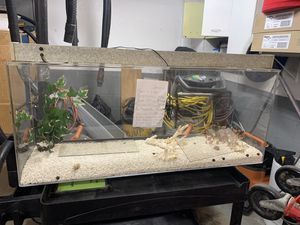 Acrylic Fish tank (not Glass) for Sale in Chicago, IL