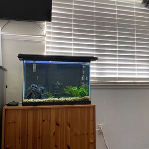 20 Gallon Fish Tank for Sale in West Sacramento, CA