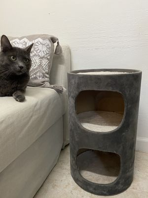 Cat bed/tower for Sale in Newark, CA