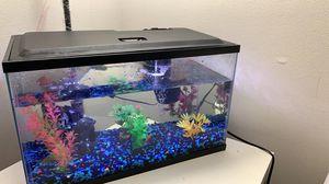 Aquarium for Sale in Johnson City, TN