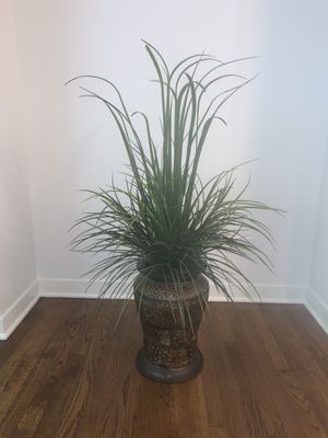 Imitation plant for Sale in Chicago, IL