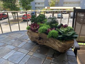 Beautiful and unique succulents in wood vase! for Sale in Miami, FL