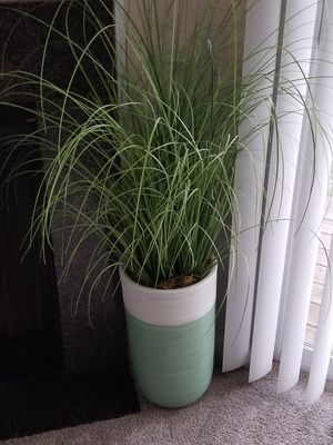 **Fake Floor Plant** for Sale in Clifton, VA