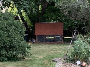 Black Sex Link Chickens and custom coop for Sale in Naperville, IL