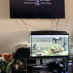 Salt Water Fish Tank 🐠 for Sale in Mission Viejo, CA