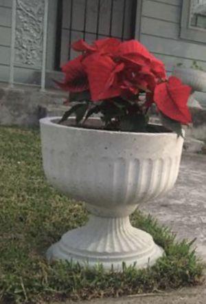 Concrete pot for Sale in Houston, TX