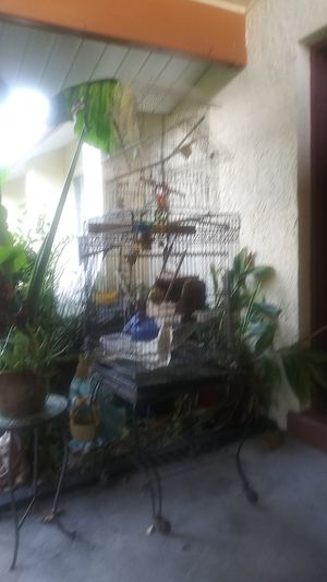Birdcage for Sale in Palm Coast, FL