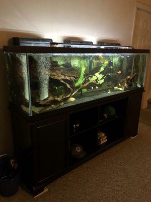 beautiful fish tank for Sale in Nashville, TN