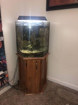 Saltwater aquarium set up for Sale in Boulder, CO