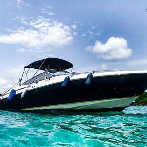 """30"""" Regal - Boat Charter! for Sale in Miami, FL"""