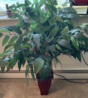 Fake plant for Sale in Fallsington, PA