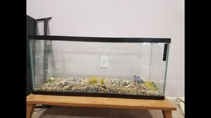 Fish tank for Sale in Sterling Heights, MI