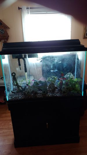 Fish tank for Sale in Graham, NC