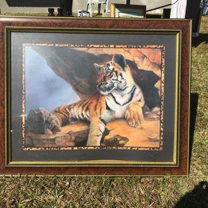 Photo Of Tiger for Sale in Miami, FL