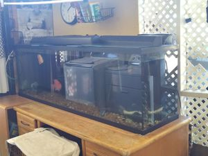 Aquarium 125 gallons including everything air pomp fish filter cover lights for Sale in San Diego, CA