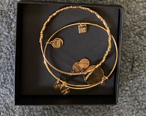 Alex and ani charm bracelet for Sale in Randolph, MA
