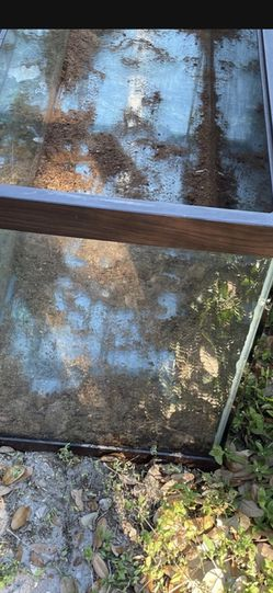 FREE LARGE TANK! LEFT IN ALLEY GET IT BEFORE CRACKED OR DAMAGED! FRE FREE for Sale in St. Petersburg,  FL