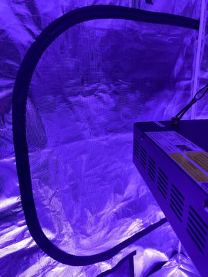 "Gorilla Grow Tent 4' x 4' x 6'11"" Grow Tent for Sale in Beaverton, OR"