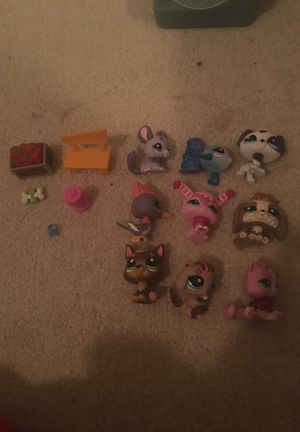 9 littlest pet shops with bench, hydrant, dog bone, dog collar, and food basket for Sale in Wake Forest, NC