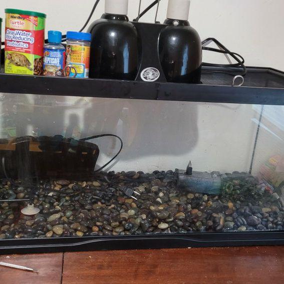 Trade 20 Gallon Aquarium Setup