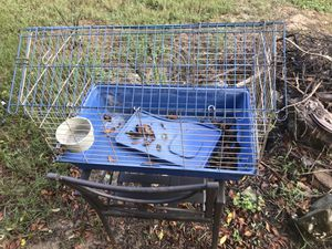 Bird cage for Sale in Palm Harbor, FL