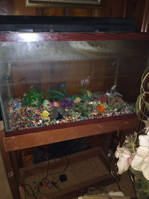 Fish tank everything included ready to go for Sale in Newport News, VA